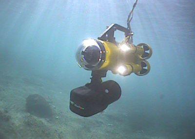 Guardian 2.1 sous l'eau avec BlueView 1