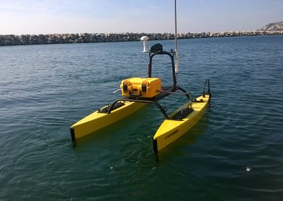 catarob de profil sur l'eau
